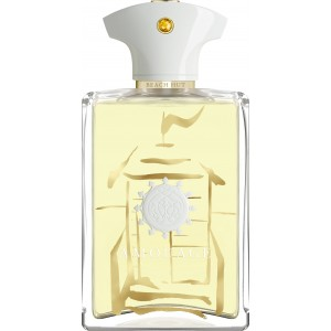 Amouage Beach Hut EDP 100ml Erkek Tester Parfüm